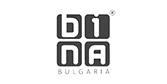 Bina_small_icon